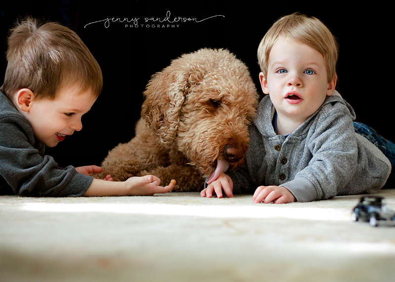 2016_01_27 Boys and dog, best photographer, Park Ridge, IL Final copy