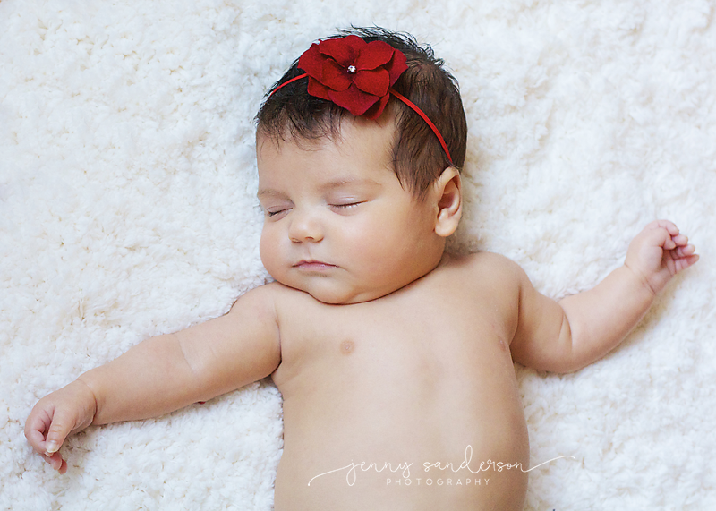 best newborn photographer in Park Ridge, IL, watermark