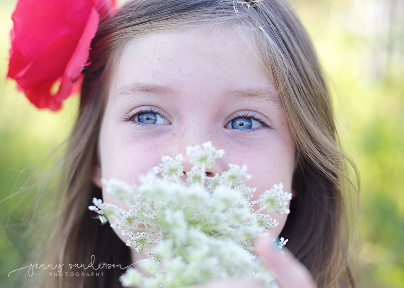 Little girl photo shoot, photo shoot in a field, best family and child photographer in Chicago suburbs and Park Ridge, IL